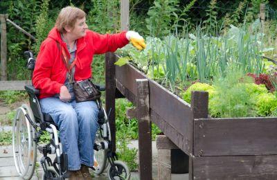 Frau im Rollstuhl pflegt ein Hochbeet