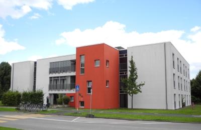 SBK -Riehl Haus Ginkgo